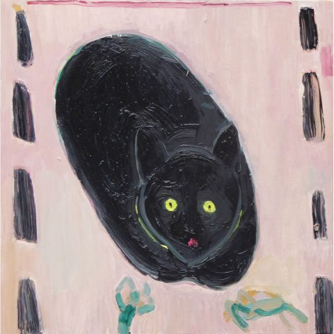 Cat Face – painting by Georgia Hayes